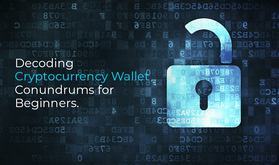 Decoding Cryptocurrency Wallet Conundrums for Beginners
