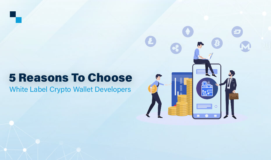build your own crypto wallet
